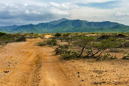 Dirt road passing through a desert with the lush green hills of Macuira National Park visible in the background in La Guajira, Colombia