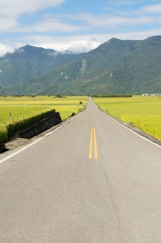 Road in rural