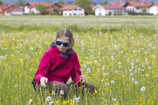 young girl on the meadow with dandelions
