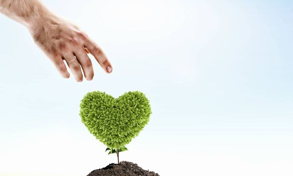 Image of human hands with plant shaped like heart. Environmental protection