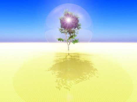 an isolated bubble with a tree inside