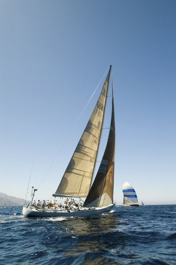Sailboat in Race on ocean back view