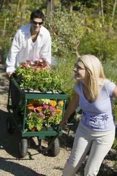 Couple walking on path in plant nursery pulling cart of flowers