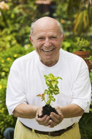 Portrait of a cheerful senior man holding a plant in garden