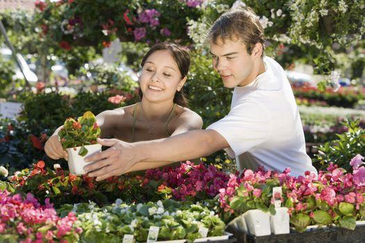 Beautiful young woman with man selecting plant at botanical garden