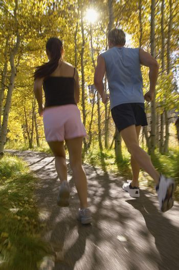 Rear view of a couple jogging along trees in woodland