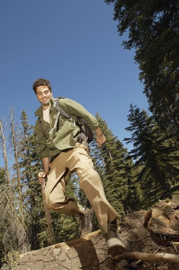 Low angle view of male hiker walking over log in forest