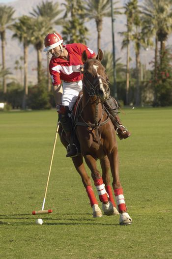 Full length of polo player swinging at ball