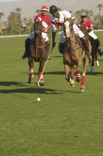 Three Polo Players In Action