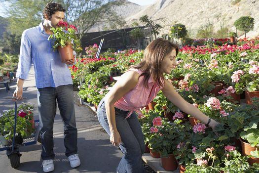 Mature couple selecting flower plants at botanical garden