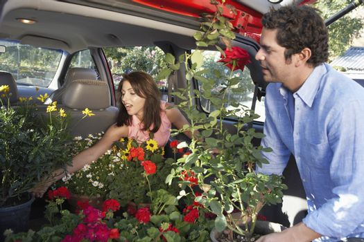 Mature couple loading plants in car's boot