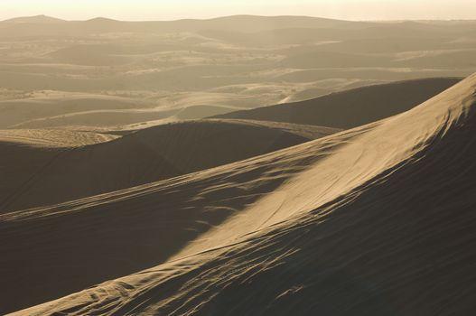 ATV tracks on sand dunes