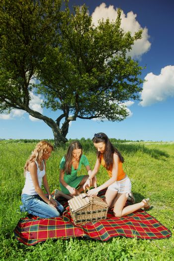 girlfriends on picnic in green grass