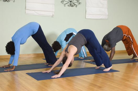 Group of people practicing yoga on a mat