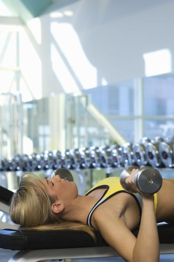 Woman Weightlifting on Bench With Dumbbells