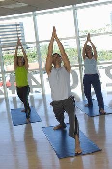 Multi ethnic people performing yoga on mat