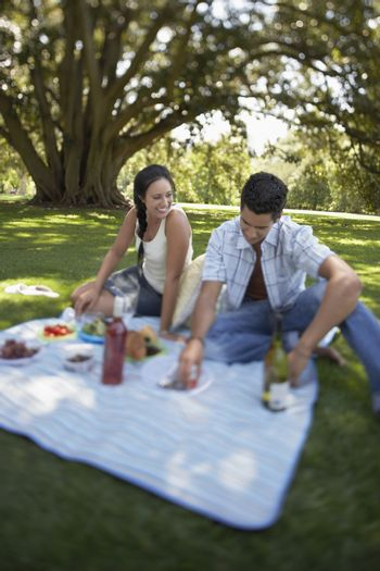 Couple sitting on picnic blanket in park