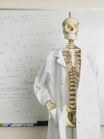 Skeleton in lab coat in front of whiteboard with mathematics calculation