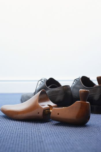 Pair of wingtip shoes with shoetree