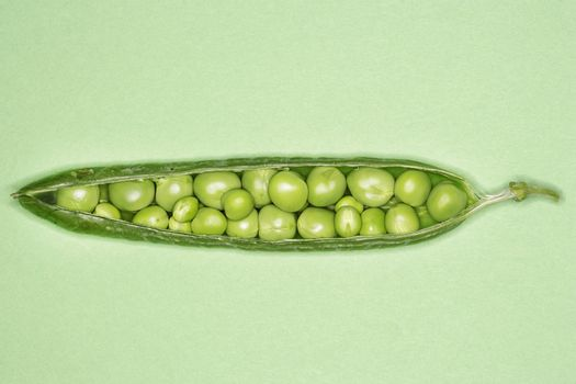 Open pea pod containing peas close-up