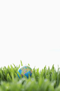 Small globe In grass - copyspace