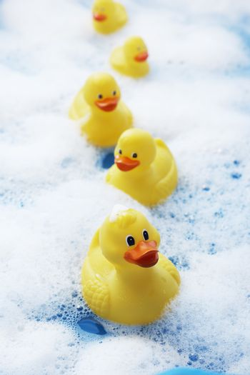 Row of rubber ducks in bubble bath elevated view close-up