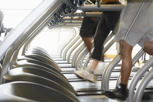 Low section of people running on treadmills in health club