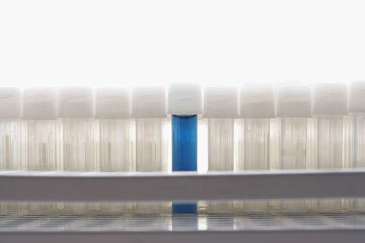 Blue test tube amongst empty test tubes