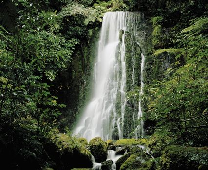 Cascade waterfall in rainforest