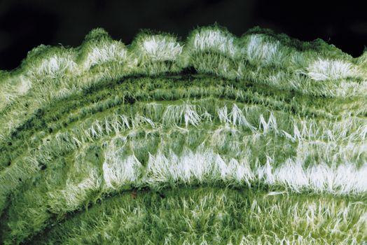 Closeup of rug over black background