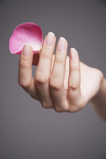 Closeup of hand holding a petal against gray background
