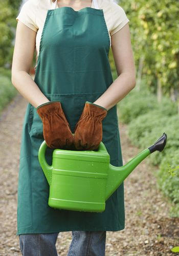 Midsection of a woman with watering can in the garden