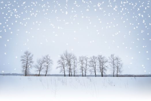 Winter Landscape with Lonely Trees and Snow