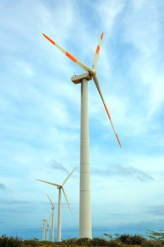 Row of windmills in La Guajira, Colombia