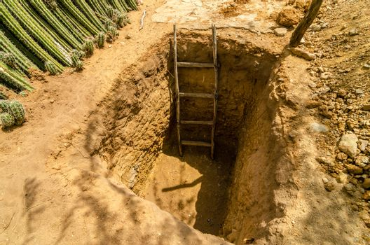 A hole in the ground with a ladder in it