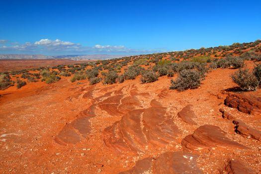 Arid Arizona Landscape