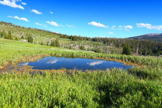 Bighorn National Forest Pond