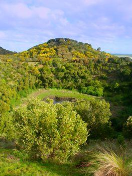 Tower Hill Victoria Australia
