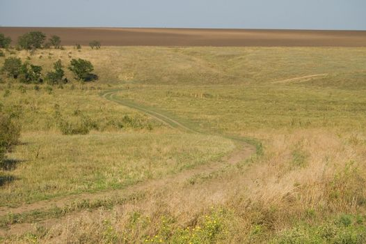 steppe winding road