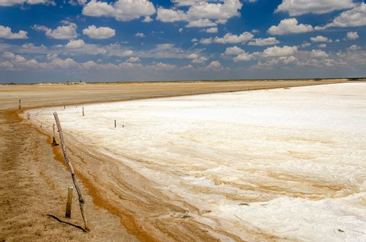 Salt pool ready to be harvested in La Guajira, Colombia