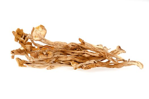 Dried chashu mushrooms - isolated on a white background