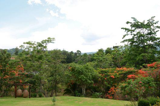 Landscape of Khao yai is a UNESCO World Heritage Site, Thailand