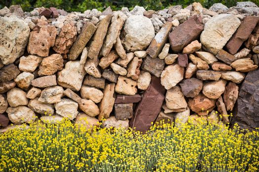 Masonry stonewall in spring with flowers Menorca