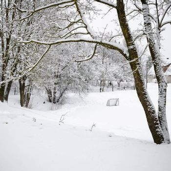 Winter landscape with a pond in the countryside