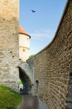Park at medieval towers of Tallinn