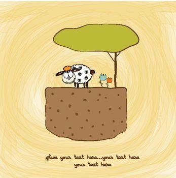 one little sheep