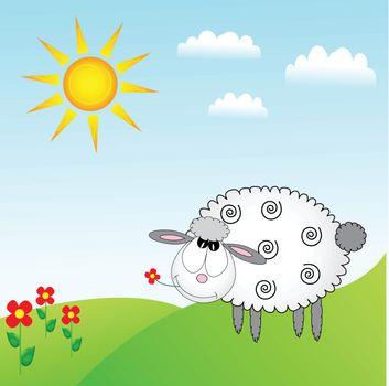 sheep background