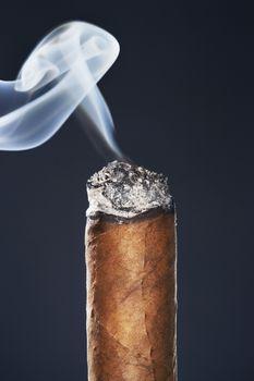 End of smoking cigar in studio black background