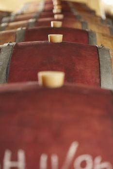 Row of wine casks in cellar