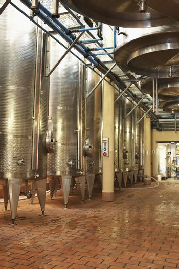 Stainless steel wine vats in a row inside the winery